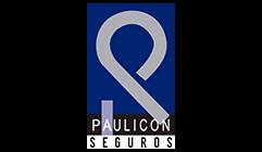 Paulicon Seguros